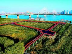武汉市汉口江滩芦花栈道10月初正式