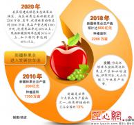 新疆林果业总产值8年增长4.5倍 今年