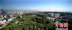 湖北宜昌市2020年底前将复绿长江干