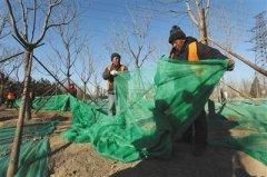 北京朝阳区今年新增改造绿化1000公