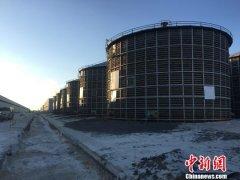 2018年黑龙江粮食总产量达1501.4亿斤