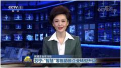 财报双线高增长背后:苏宁智慧零