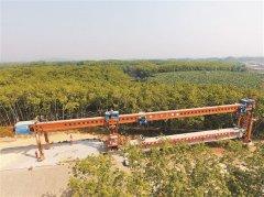 中老铁路国内段第一长桥橄榄坝特