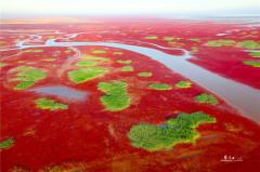 黄河口生态旅游区最美代言人火爆征集中